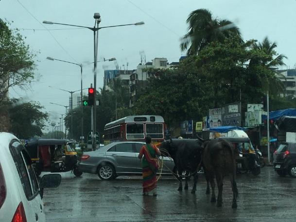 Mumbai 01
