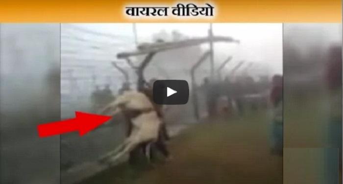 वायरल वीडियोः ऐसे ही आते होंगे सीमापार से आतंकी !