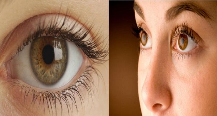 eye आंखों के रोगों के लिए नवीन तकनीक का विकास