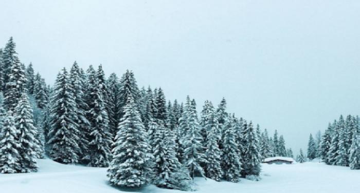 snowfall केदारनाथ में बर्फबारी के बाद लोगों को गर्मी से मिली राहत