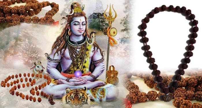 shiv rudraksh सावन में करना चाहते हैं भगवान शिव को खुश, तो करें इस मंत्र का जाप- मिलेगा मनोवांछित फल