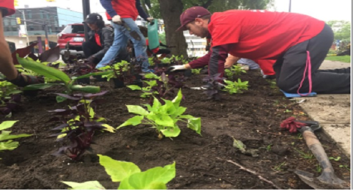 0007 arun पर्यावरण बढ़ाने को बच्चों ने किया पौधरोपण