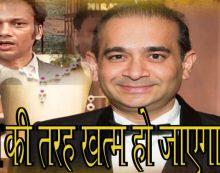 2जी की तरह खत्म हो जाएगा केस, नीरव मोदी के वकील ने किया दावा