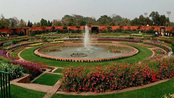 आम जन के लिए मंगलवार से खुलेगा मुगल गार्डन, रेनिनकुलस है इस बार खास