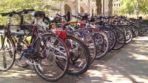 राज्य में साइकलिंग को प्रमोट करेगी सरकार, लगाएगी साइकिल एक्सपो
