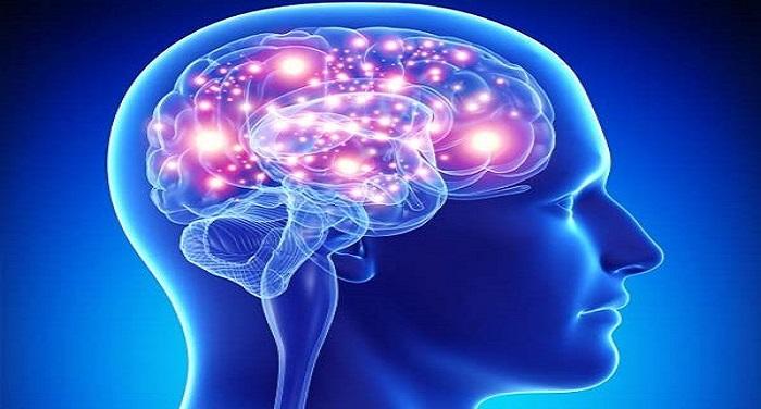 2015 11image 16 51 526569726activebrain ll दिमाग को पढ़ने के लिए वैज्ञानिकों ने बनाया एआइ, खुलेंगे सारे राज