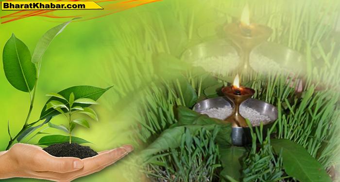17 40 निबन्धन एवं मुख्य कार्यकारी अधिकारी भेषज विभाग डॉ.मेहरबान सिंह बिष्ट ने बताया कि पौधों को वितरित किया जाना है