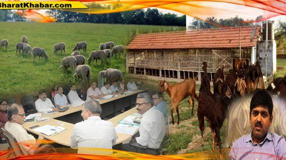 उत्पल कुमार सिंह की अध्यक्षता में आयोजित बैठक में किसानों की आय दोगुना करने की कारगर योजना