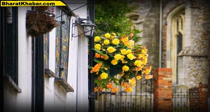 फूलों से इस तरह से बढ़ा सकते हैं अपने घर की सुंदरता…