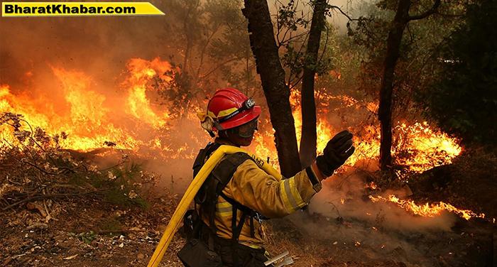 अमरीका के जंगलों में लगी आग ने मचाई तबाही, अब तक 6 लोगों की हुई मौत