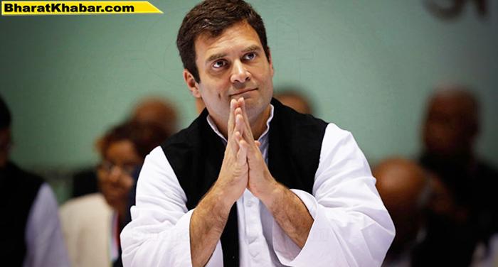 rahul gandhi 7 राजस्थान: आगामी विधानसभा चुनाव को लेकर राहुल गांधी 11 अगस्त से शुरू करेंगे चुनाव प्रचार