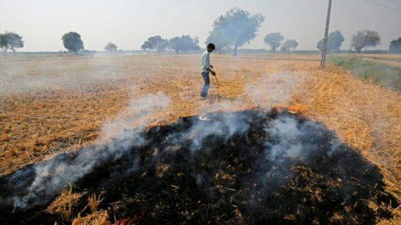 नासा का दावा, पंजाब और हरियाणा की वजह से हो रही है दिल्ली की हवा जहरीली