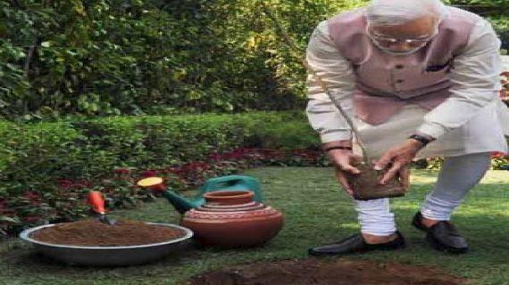 पीएम मोदी ने योग से पहले लगाया पौधा