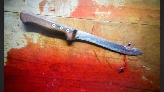पुरानी रंजिश के चलते दो सगे भाइयों की चाकू से गोदकर हत्या, पुलिस ने किया एक आरोपी को गिरफ्तार