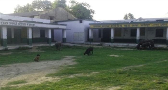 उत्तर प्रदेशः फतेहपुर जिले के बहुआ ब्लाक के सरकारी स्कूल में शराब पीता है शिक्षक