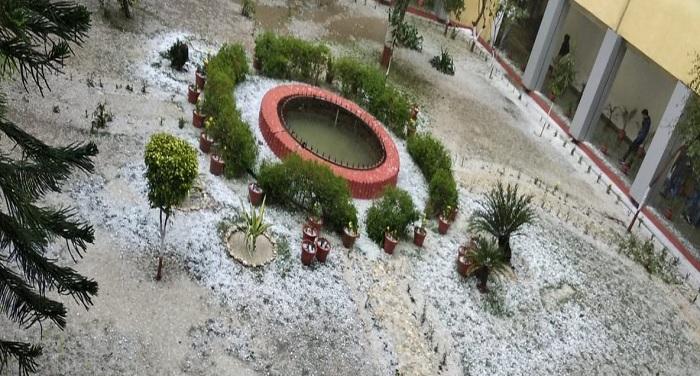 aale उत्तर भारत में एक बार फिर मौसम ने बदली करवट, नोएडा में ओले गिरे
