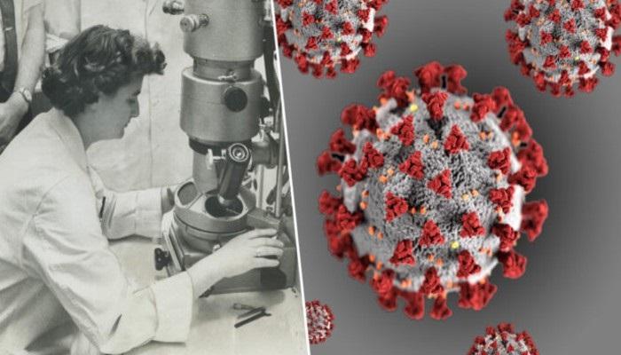 जून अल्मीडा 56 साल पहले माइक्रोस्कोप में देखा गया था कोरोना वायरस, इस महिला वैज्ञानिक ने की थी खोज
