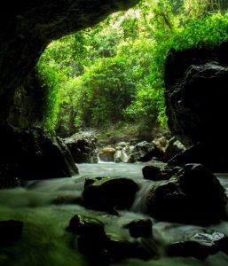 cave 2 लॉकडाउन के  बाद  खूबसूरत 'डाकुओं की गुफा' कर रही आपका इंतजार...