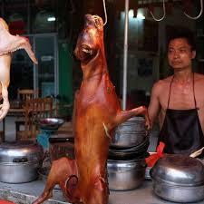 chaina 1 3 चीन में बंद होने जा रहा कुत्ते का मांस, चीन पर कैसे पड़ेगा इसका असर?