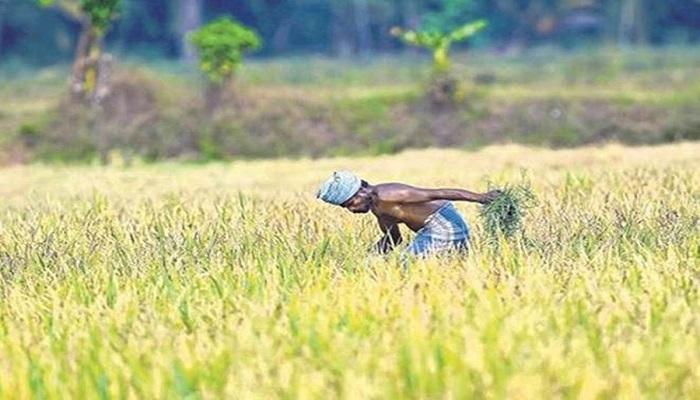 kisan 1 PM Kisan Yojna: पहुंचने वाले हैं किसानों के खाते में 9वीं किस्त के 2000 रुपये