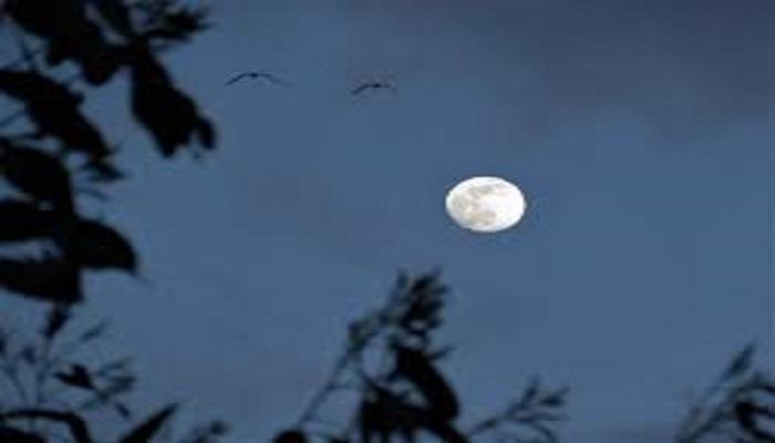 moon 1 धरती पर रहकर चांद खरीदना हुआ आसान, बस आपको करना होगा ये काम..