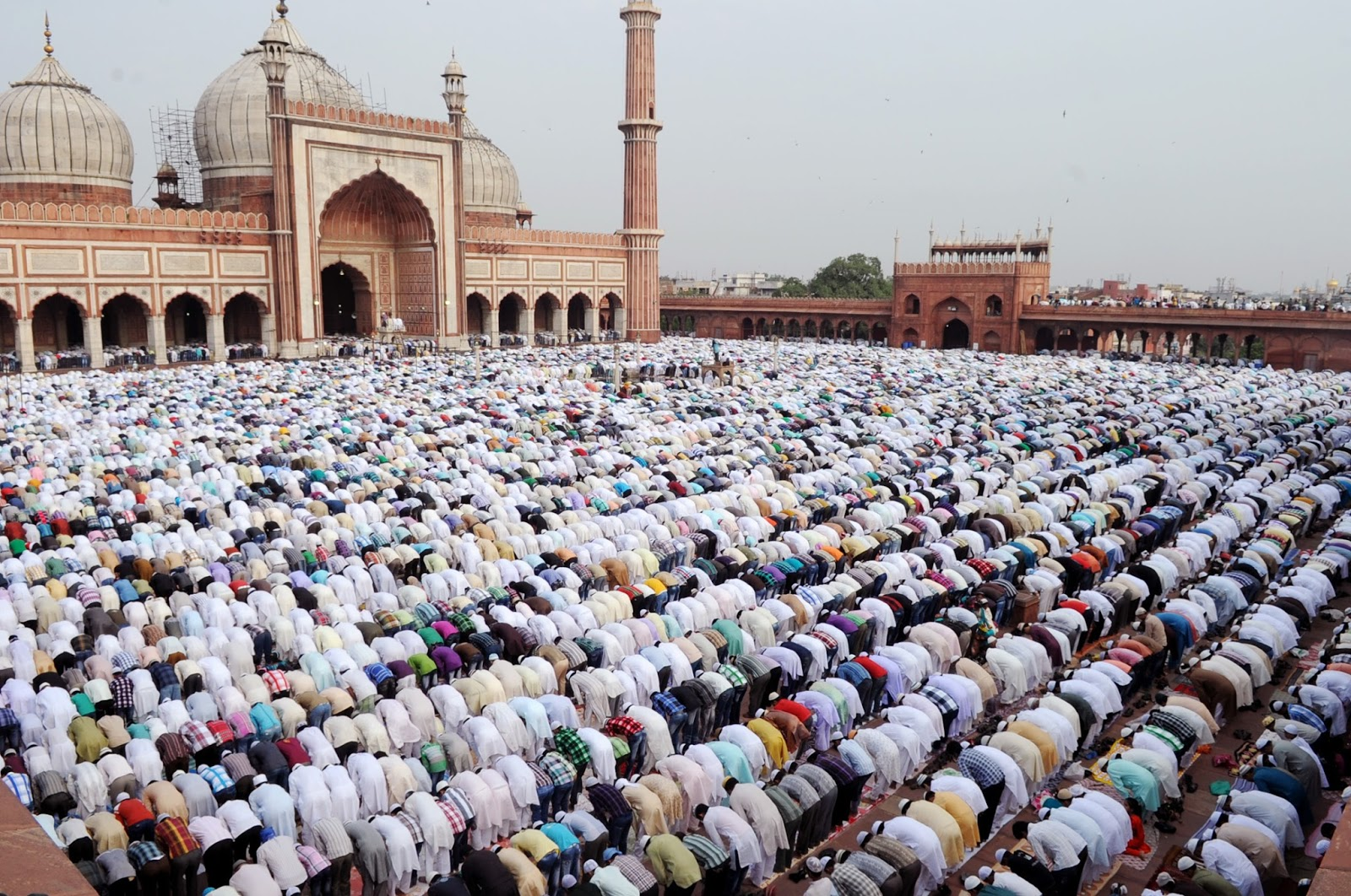 namaz 1 दारुल उलूम देवबंद का फतवा, घरो में होगी ईद की नमाज