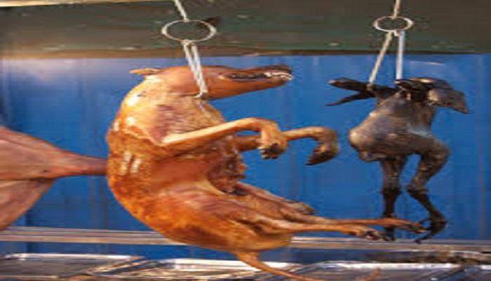 कोरोना के बीच चीन को कुत्ता भाया, चीन कुत्ता काट के खाया..