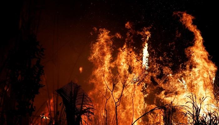 fire 1 कोरोना और हिंसा के बीच जंगली आग से जलकर खाक हुआ अमेरिका..