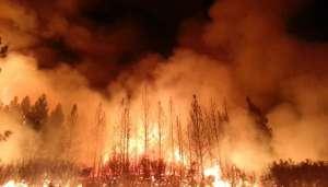 fire 2 कोरोना और हिंसा के बीच जंगली आग से जलकर खाक हुआ अमेरिका..