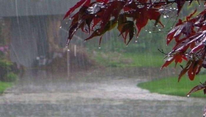havy rain दिल्ली में पहुंची मानसून, बिहार में भारी बारिश के चलते रेड अलर्ट जारी