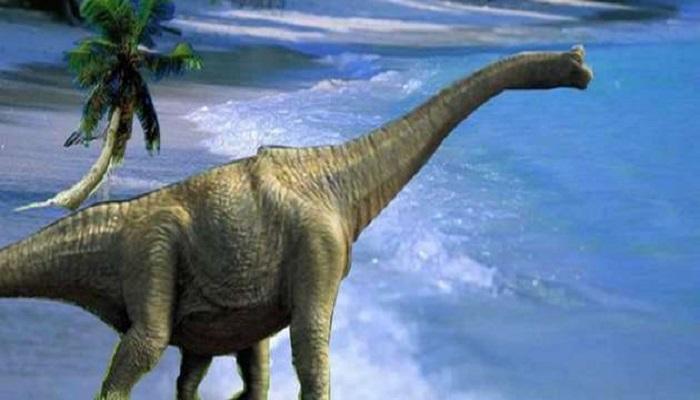 करोड़ो साल पहले मरे डायनासोर का मिला कंकाल, खुले कई रहस्य..