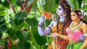 lord 11 हरियाली तीज पर जानें मां पार्वती और भगवान शिव से जुड़े अनोखे रहस्य..