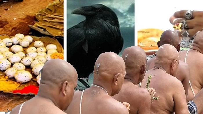 sarvpitri amawashya Home Page