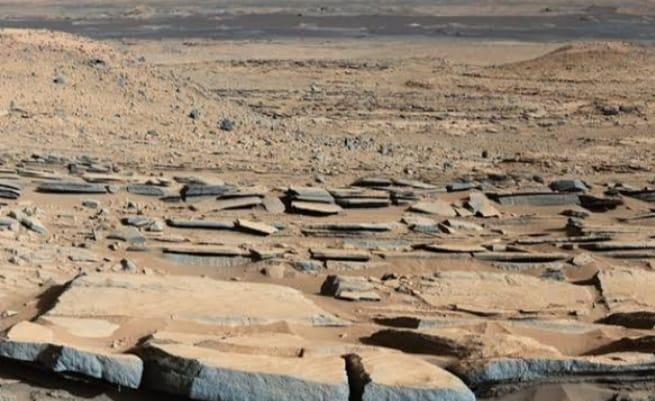 d611615c 9f4c 4bb9 8416 d5246e73ae04 नासा के मंगल ग्रह को लेकर किया बड़ा दावा, कहा- धरती के ये चार जीव रह सकते हैं