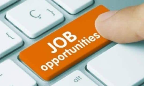 बेरोजगारी में युवाओं के लिए कारगार साबित होगा यूजेवीएनएल, इन पदों पर निकलेंगी कई भर्तियां